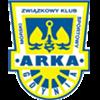 Vereinslogo von Arka Gdynia