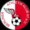 Zur Vereinsseite von Berliner AK 07