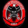 Zur Vereinsseite von Çorum Belediyespor