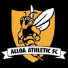 Zur Vereinsseite von Alloa Athletic